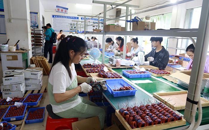 湖北襄陽剩余貧困人口578戶將于11月底完成脫貧驗收