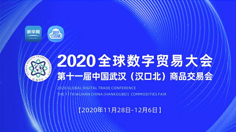 【新華雲直播】2020全球數字貿易大會開幕式