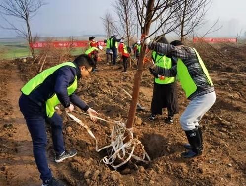 武漢生態環境局組織開展府河濕地植樹造林志願活動