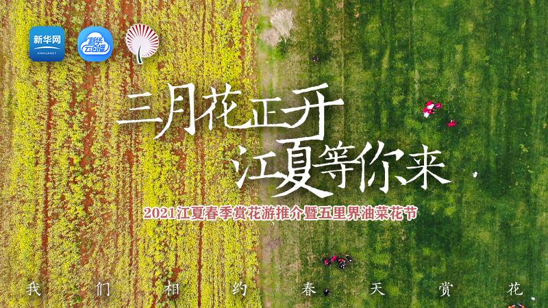 2021江夏春季賞花(hua)游推介(jie)暨五(wu)里界油菜花(hua)節直播(bo)