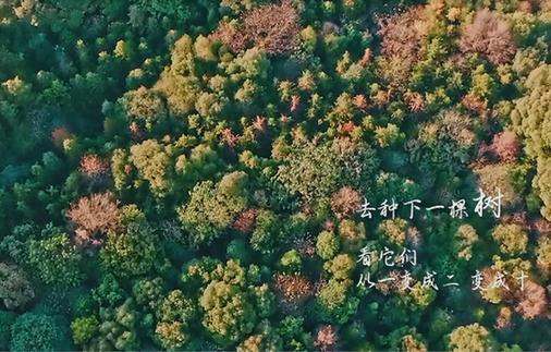 春天種下一棵樹,我們都是有故shi)碌娜ren)