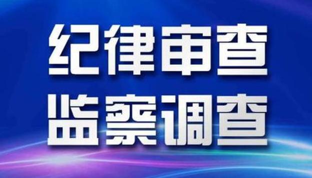 武漢市政府原黨組成員、副市長徐洪蘭被開除黨籍和公職
