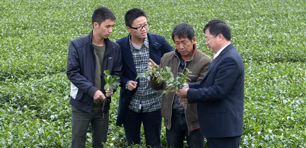 青年学员导师、湖北省大悟县河口镇书记杜荣(右一)带领学员了解农业生产情况