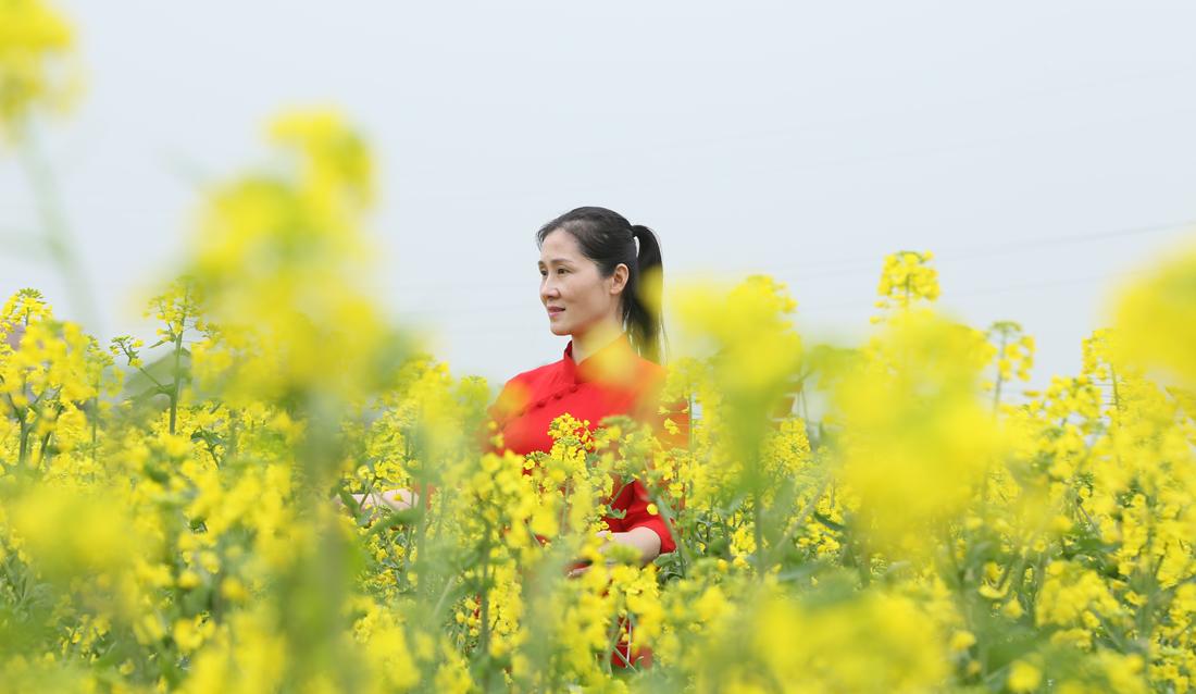 近年来,武穴市油菜花旅游经济持续升温,每年三、四月份油菜花开来武穴旅游观光的游客逐年增加。(连迅 摄)